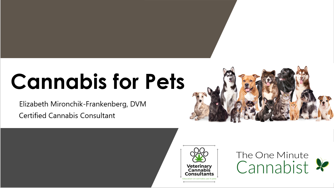 cannabis for pets top slide updated final 2019